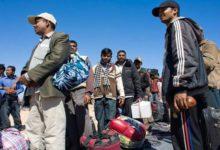 Photo of অবৈধ প্রবাসীদের সাধারণ ক্ষমার ঘোষণা আমিরাতের